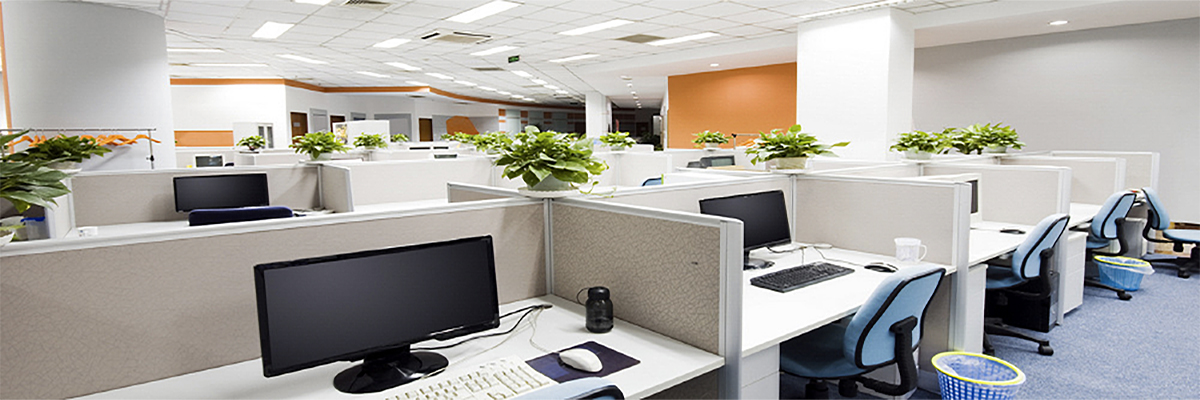 Office Painting A Speciality!